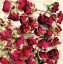 2-3CMS RED CLARET MINIATURE  DRIED ROSE BUDS BEAUTIFUL REAL FLOWER NATURAL