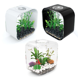 Black & Clear Good Companions For Children As Well As Adults Available In White Amiable Biorb Life 30l Aquariums Mcr