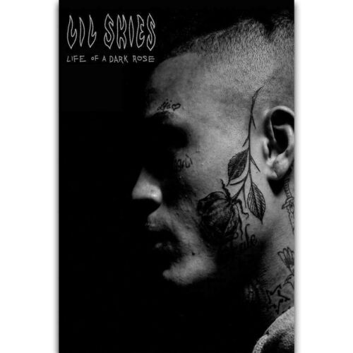 Life of a Dark Rose Lil Skies Rapper Album Cover Poster Art Fabric Decor X-531