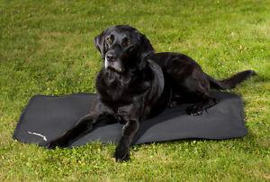 Matelas thérapeutique pour chiens de retour sur piste, ajustement cage