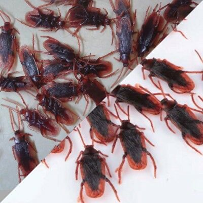 12 REALISTIC FAKE COCKROACHES LARGE CREEPY COCK ROACH BUGS PRANK GAG GIFT