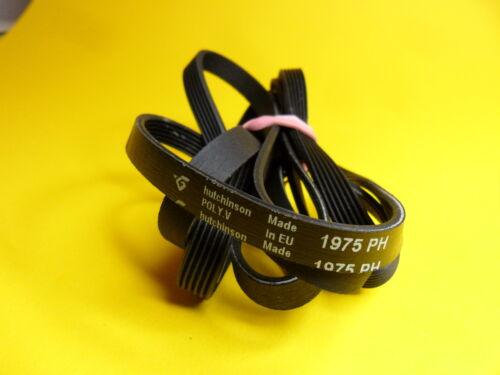 Cinghie trapezoidali Cinghia V BELT 1975ph 1975 h6 ph6 6ph1975 1975ph6 1975h6 asciugatrice
