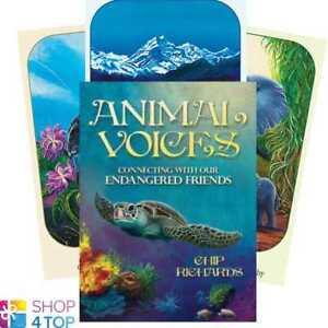 Animal-Voices-Deck-Oracle-Chip-Richards-Geheimlehre-Blue-Angel-New
