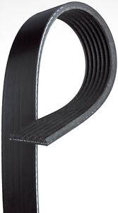 Serpentine Belt CRP PK070701 fits 03-07 Honda Accord 2.4L-L4