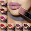 21-Color-PUDAIER-Long-Lasting-Waterproof-Velvet-Matte-Lipstick-Liquid-Lip-Pencil thumbnail 1