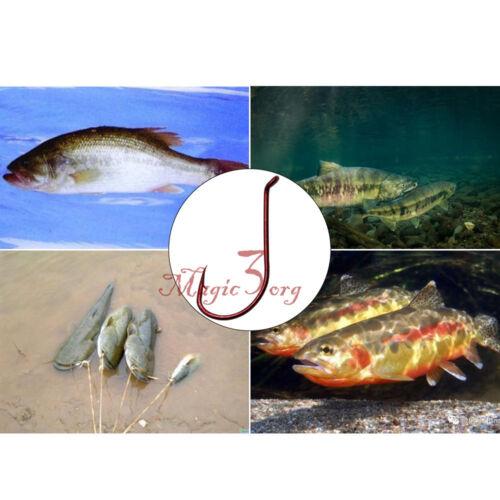 50//100pcs Fishing Hooks High Carbon Steel Red Octopus Offset Circle  Bass Jig