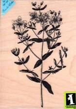 New Inkadinkado RUBBER STAMP Brenda Walton XL Flower stalk FREE US SHIP