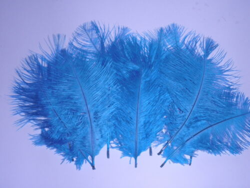 25 AQUA DYED DRABS IMPERFECT SECONDS 5-6 INCH 125-150MM