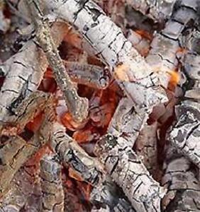 Wood ash fertilizer, soil neutralizer 6 Oz