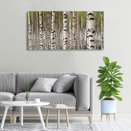 Glas-Bild Wandbilder Druck auf Glas 100x50 Deko Blumen /& Pflanzen Birkenwald