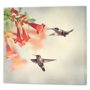 Floral-Bird-Canvas-Print-Framed-Ready-to-Hang-Spring-Wall-Art-Photography