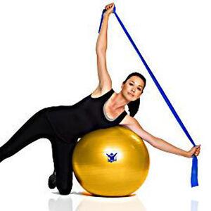 NEW! Gaiam 5-piece Core Advantage Stability Ball Kit, Yoga Ball - Small 55cm