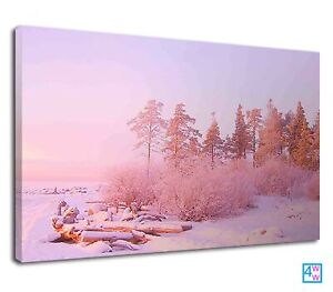 Pastel Pink Sky In Winter For Drawing Room Canvas Print Wall Art Picture