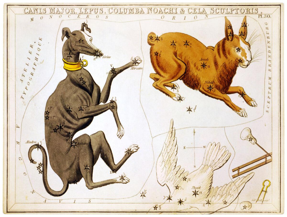 16x20 Decoration CANVAS.Interior room design art.Astrology chart.HGoldscope.6435