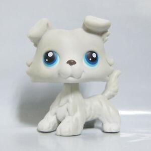 Littlest Pet Shop LPS Jouet #363 Blanc Gris Collie Chien Chiot double yeux bleus B2 S  </span>