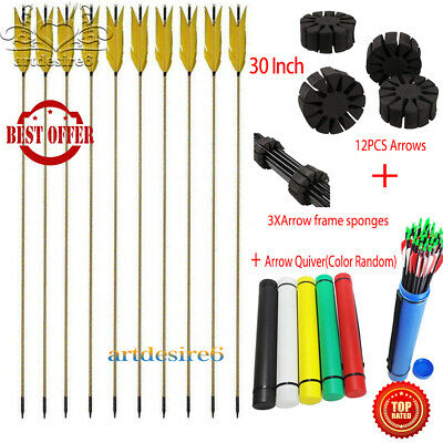12PC 30/'/'Archery Hunting Shooting Pure Carbon shaft Arrows+2XSplit arrow sponges