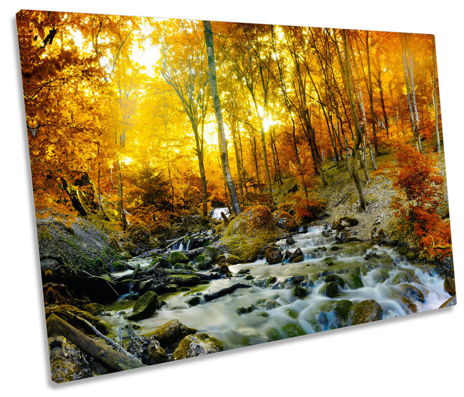 Sunset Sunset Sunset Autumn Forest Creek River SINGLE CANVAS WALL ART Print Picture 3a5fd4