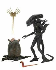 "NECA Alien 1979: Big Chap Ultime du 40e Anniversaire Figurine 7"""