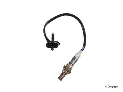 Oxygen Sensor-Denso Upper//Lower WD EXPRESS 800 20005 039