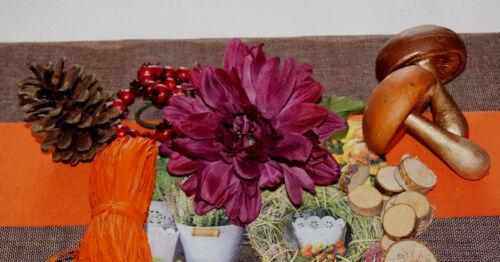Herbstdeko Herbst Pilz Pilze Tischdeko Deko basteln natur braun gold 3 Stück