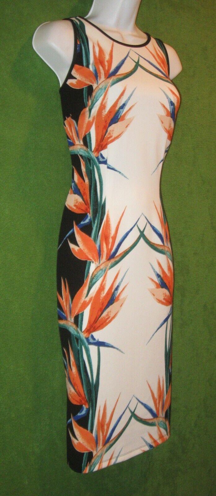 Enfocus Studio Multi-Farbe Bird Paradise Floral Stretch Dress 8  MISC