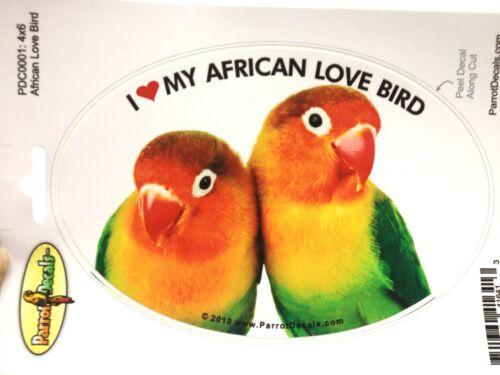 African Fischer/'s LoveBird Parrot Exotic Bird Vinyl Decal Bumper Sticker