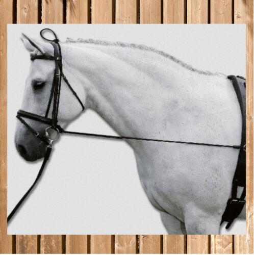 Neckstrecher Elastic Waldhausen Halsverlängerer Elastic Pony schwarz