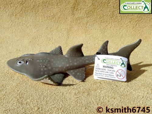 Collecta Shark Ray Jouet en plastique Wild Zoo mer animal marin Guitare poisson NOUVEAU