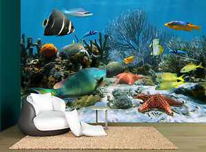 Image Is Loading Sea Coral Reef Under Water Fish Wall Mural