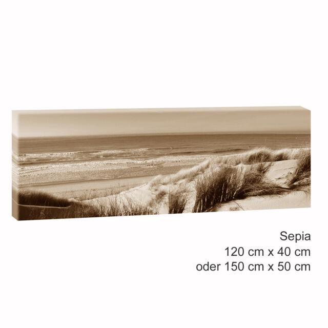 Bild auf Leinwand Keilrahmen Poster XXL 120 cm*80 cm 469 Nordseedünen