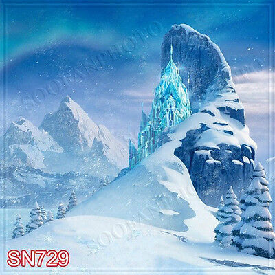 Christmas 10'x10' Computer-painted Scenic Photo Background Backdrop SN729B881