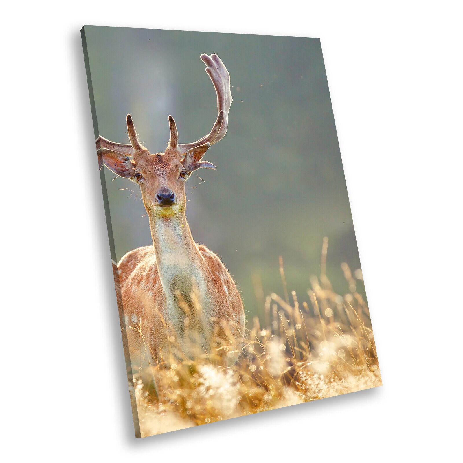 Stag Deer Blau Grün Grass Portrait Animal Canvas Wall Art Picture Prints