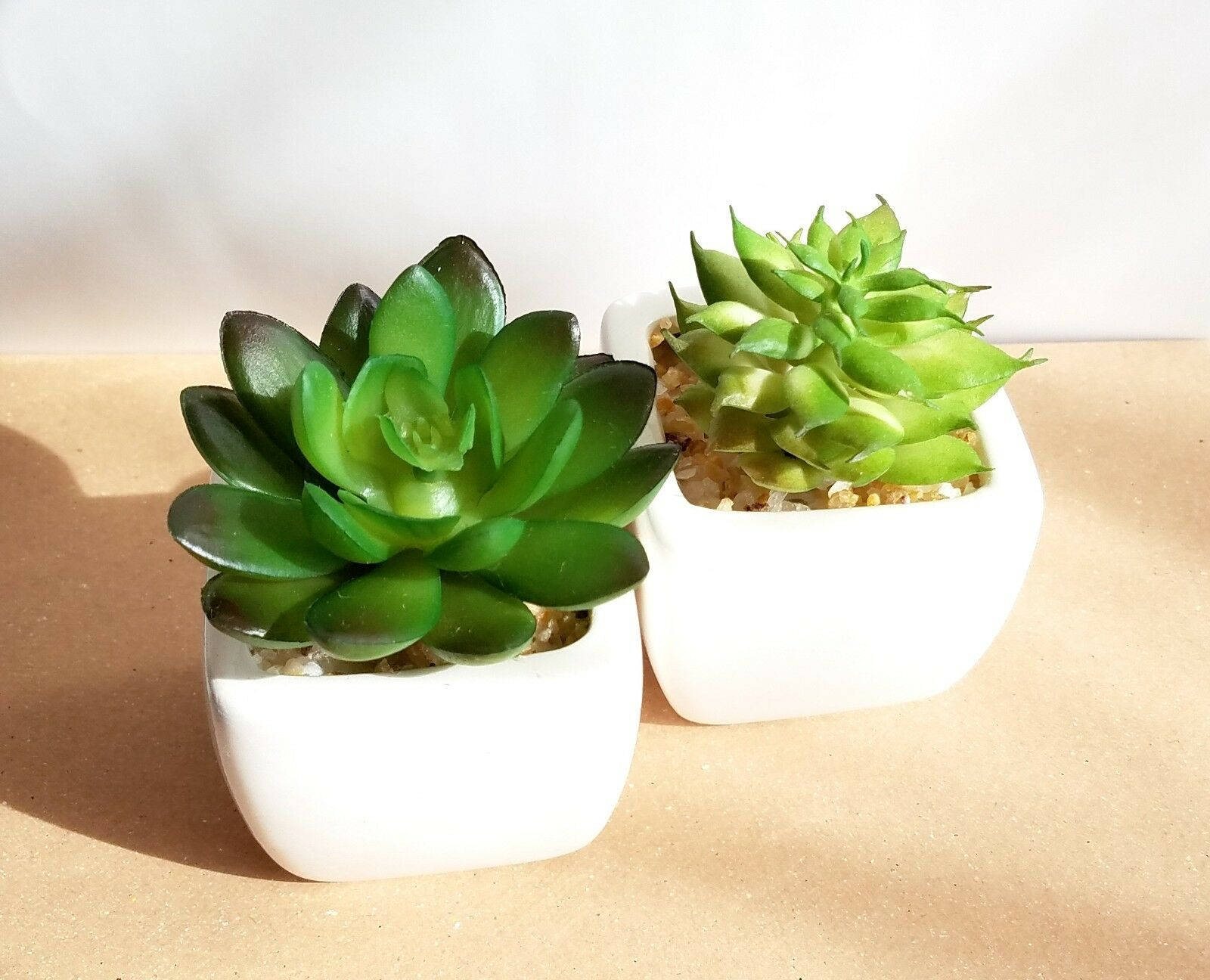 NEW Airplant or Succulent In Clay Pot with Macrame Hanger 30048475