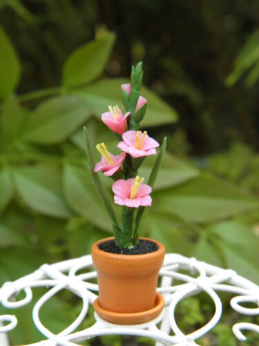 Miniature Dollhouse FAIRY GARDEN ~ Pink Gladiolus Flowers in Clay Pot ~ NEW