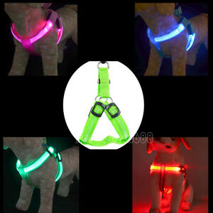 LED-Glow-Flash-Light-Dog-Puppy-Belt-Harness-Collar-Tether-Pet-Safety-Leash-Ropes