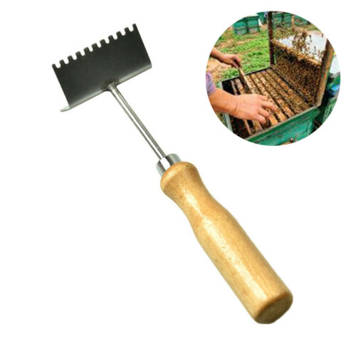 Queen Bee Excluder Nest Frame Cleaning Shovel Cleaner Beekeeping Tool Charm