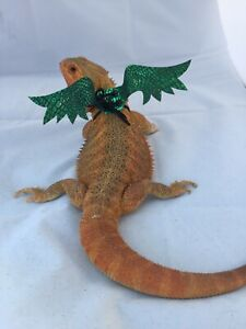Dragon-Wings-and-Things-Bearded-Dragon-Small-Pet-Harnesses-Costume