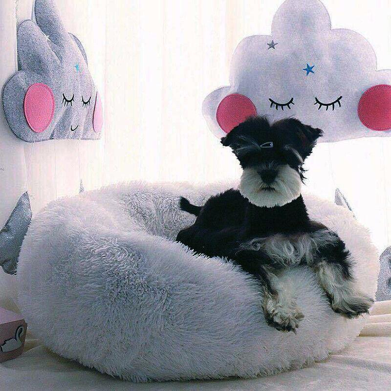 Große Hundebett Haustier Hund Katze Bett Nest Kissen Weiches Waschbar Flauschige 10