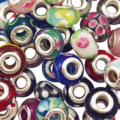 Lot Mixed Handmade Murano Lampwork Glass Beads Fit European Charm Bracelets DIY