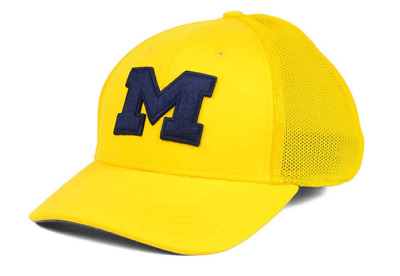 Michigan Wolverines Nike Dri Fit Swoosh Flex Stretch Fit Cap NWT