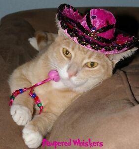 Pink Fiesta Fuchsia Buckaroo Banzai miniature sombrero hat for dogs and cats