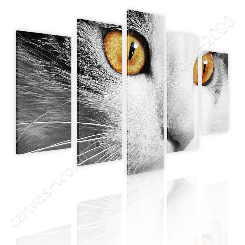 Orange Eyes by Split 5 Panels   Canvas (Rolled)   5 Panels Wall art giclee HD