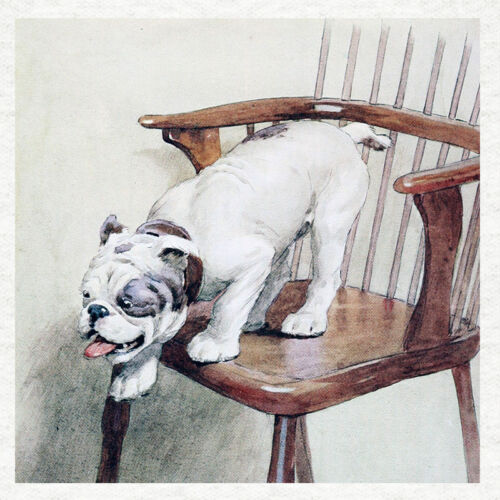 "Bulldog /""Fetch my slippers/"" Cecil Aldin 1890 print on a modern fabric panel"
