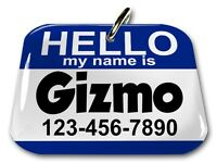 Hello My Name Is Blue Rectangle Dog Cat Charm Custom Pet Tag By Id4pet