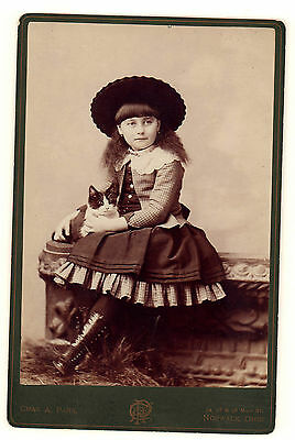 Vintage Cabinet Photograph of a Little Girl With Her Cat, Norwalk, Ohio