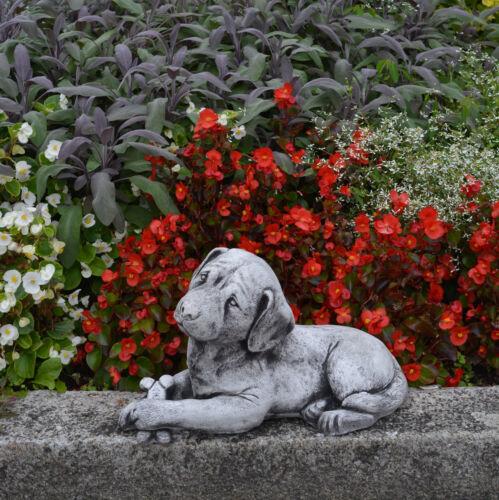 Sucrée Massif Pierre Labrador Chien Ciment Décoration D/'Espace de Jardin Moulé
