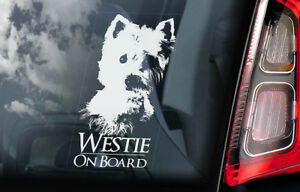 Westie-Car-Window-Sticker-Dog-on-Board-Decal-West-Highland-White-Terrier-V01