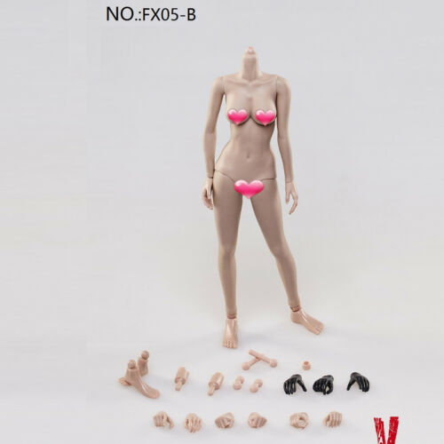 sized Breast Wheat Color Female Body Without Head VERYCOOL 1//6th FX05-B Big