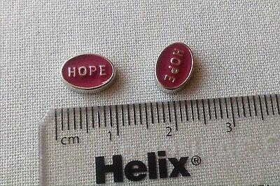 Living Memory Locket Floating Charm Pink Hope **UK SELLER**