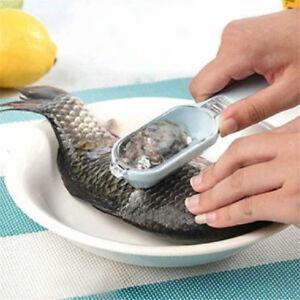 Raschietto-per-pulire-i-pesci-in-acciaio-inox-WFLO